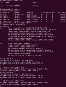 vm ssh and ping test
